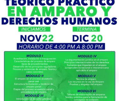 Diplomado Teórico Práctico en Amparo y Derechos Humanos